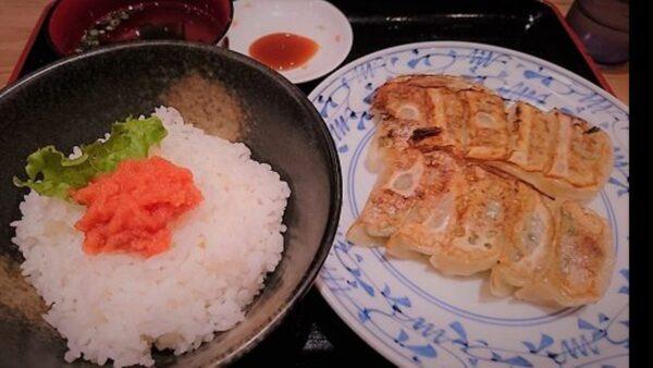 テムジン 餃子定食