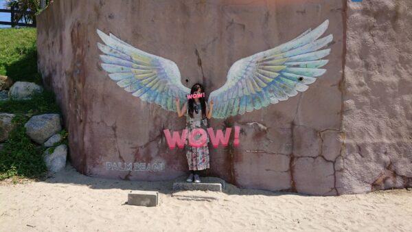 糸島 天使の羽